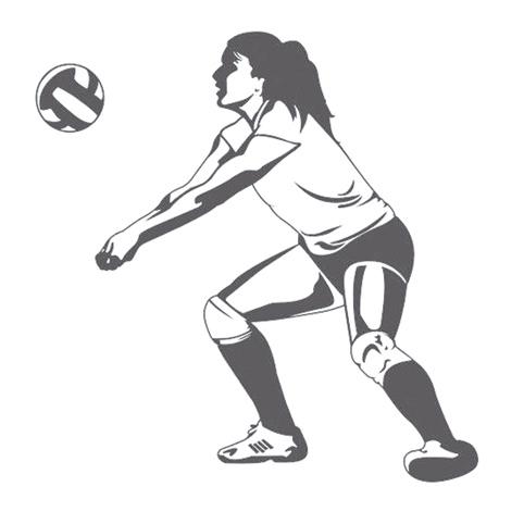 web1_volleyball-jpg.jpg