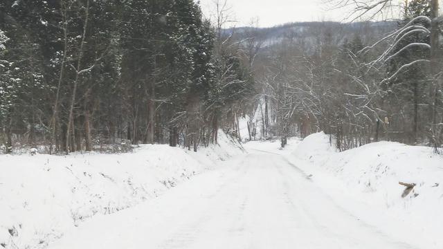 web1_SnowScene2.jpg