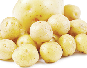 web1_Seed-Potatoes.jpg