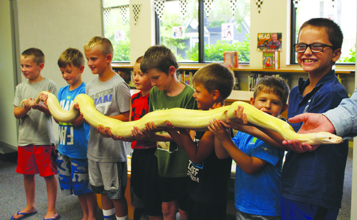 It takes this whole group of uneasy young men to handle this Yellow Albino Python during a special presentation on Monday at the Peebles Library