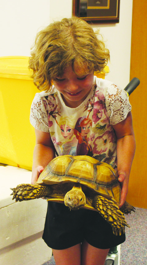 Though with perhaps a little trepidation, this young lady handles a 20-lb. African Tortoise.