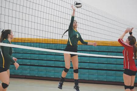 North Adams' Charlee Louden goes up for a play at the net during the Lady Devils' straight set victory over Eastern Brown in the Division III sectional finals.  Louden had a big day with 11 kills as the North Adams girls advanced to district play.