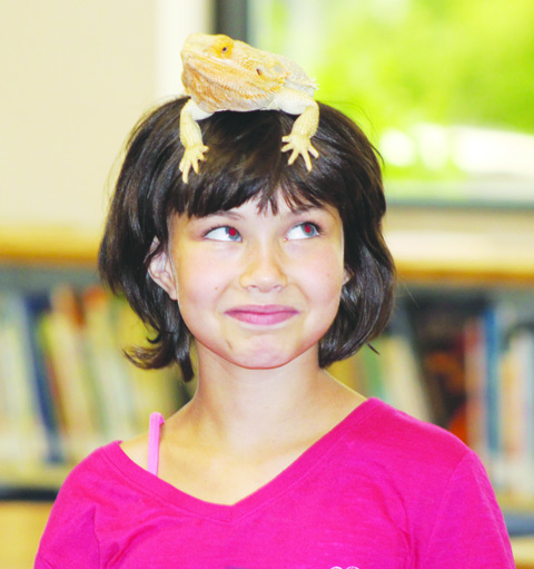 Not your typical headwear as this young lady models the latest fashion, a Bearded Dragon.